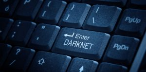 The Dark Net, Crypto and the Future of Cybercrime